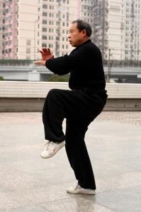 Shanghai Tai Chi Practitioner