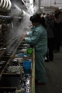 Suzhou Silkworm Factory